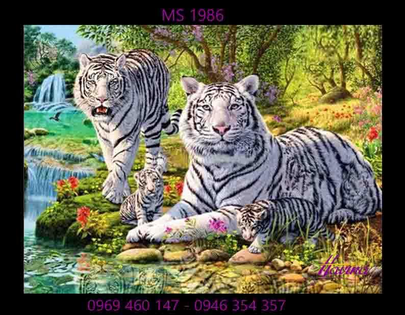 Tranh thêu con hổ ms 1986